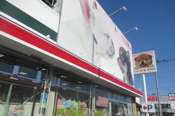 ペットの専門店コジマ 相模原店(ホテル)