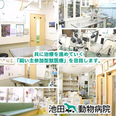 池田動物病院