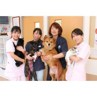 みずえ動物病院