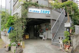 犬の美容室 SHIPS