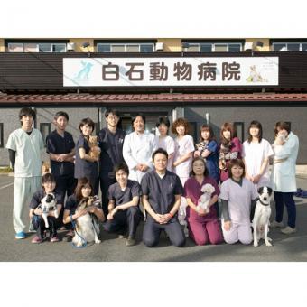 白石動物病院(トリミング)