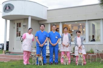 鎌倉山動物病院