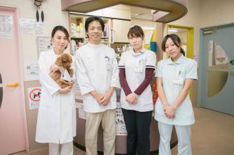 かそり動物病院
