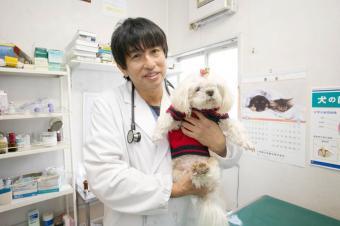 すずき動物病院