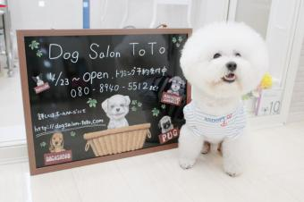 Dog Salon ToTo
