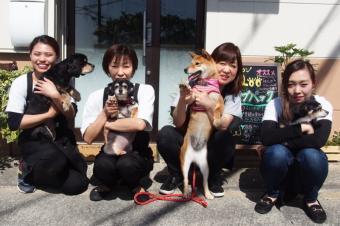 Dog サロン Qoo 泉佐野店