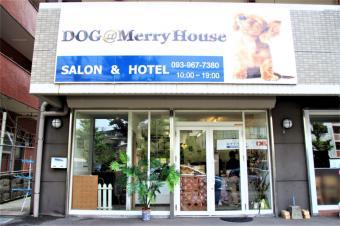 DOG@MerryHouse 小倉