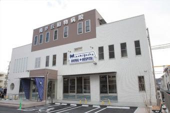 南が丘動物病院