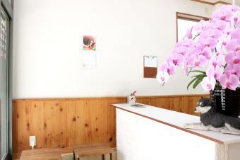 トリミングサロン&ホテル wan