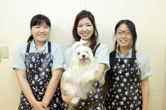 ペットプラザ江東深川店
