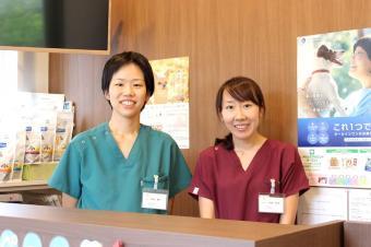 小江戸どうぶつ病院
