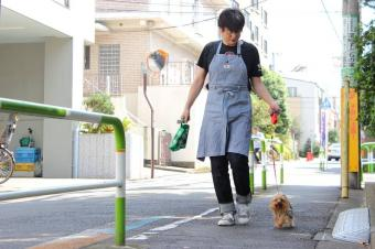 犬と、人と、