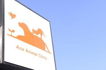 エース動物病院