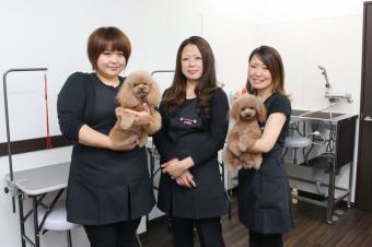 トリミングサロン cute 吉川美南店