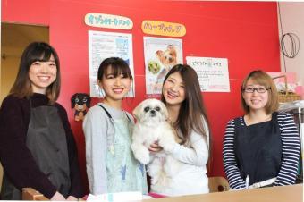 Dogking 中山店