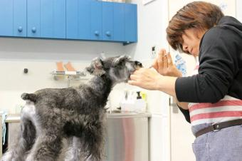 犬の美容室CocoRon