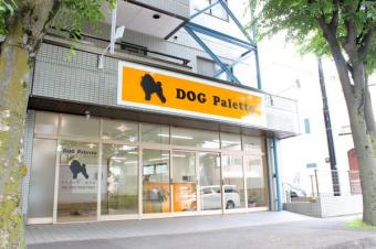 DOG Palette