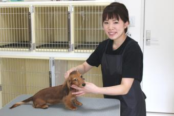 Dog Salon Peco