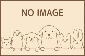 愛犬の美容室ワンアップ