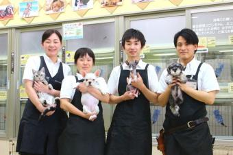 ニューサンドッグ 高萩店