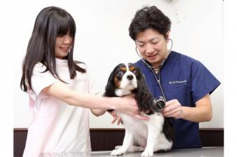 つきみ野松崎動物病院