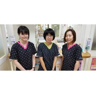 亀山動物病院(トリミング)