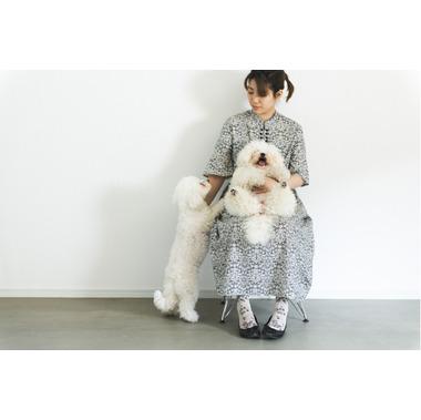 ドッグサロン tsumugi