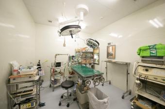 たか動物病院