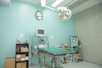 アシル動物病院