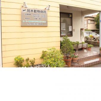 岡本動物病院(トリミング)