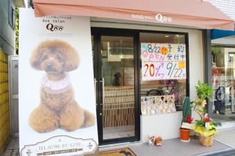 Dog サロン Qoo 西宮店