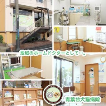 青葉台犬猫病院