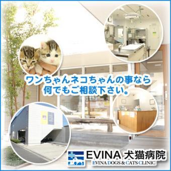EVINA犬猫病院