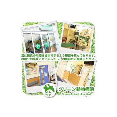 グリーン動物病院