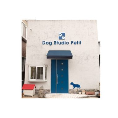 Dog Studio Petit [ペットホテル]