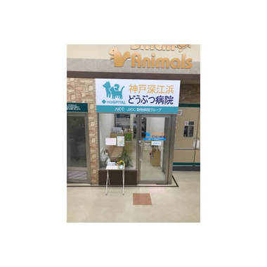 神戸深江浜どうぶつ病院