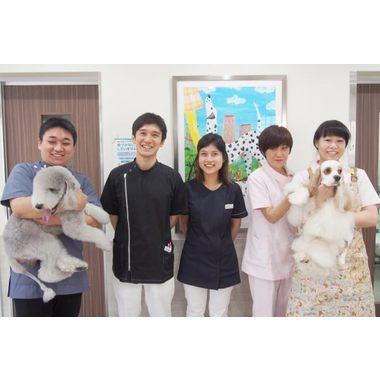 リバティ 神戸 動物 病院