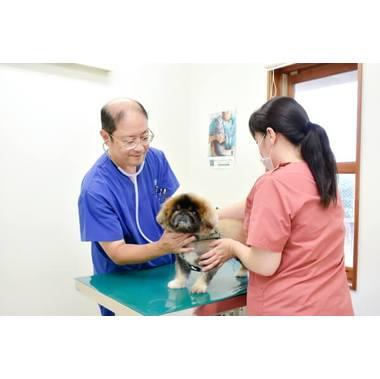 トミー犬猫病院