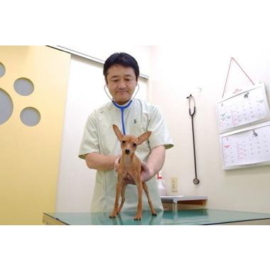 ほーむず動物病院