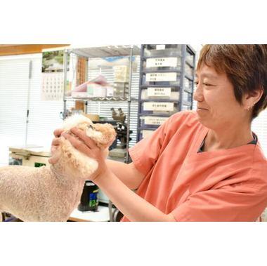 本間獣医科医院 細江町病院