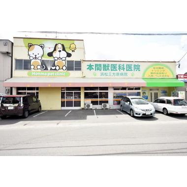 本間獣医科医院/浜松三方原病院
