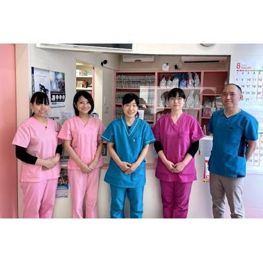 ノブ動物病院