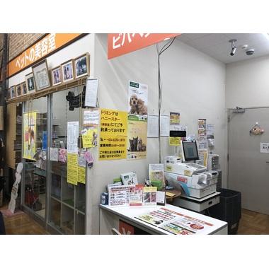 ビバペッツロイヤルドッグサロン豊洲店
