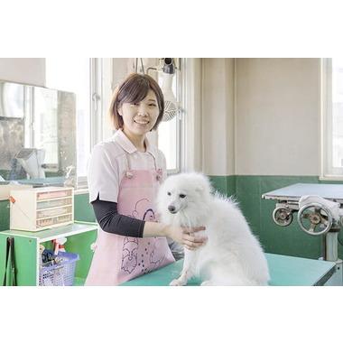 和歌山獣医綜合病院 美容部