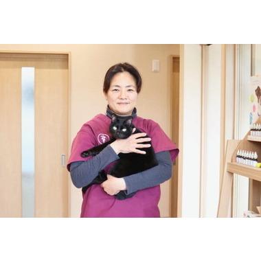 P+Heart 動物病院