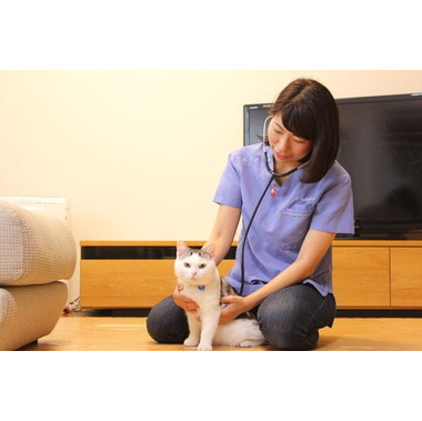 にしきおりペットクリニック(往診動物病院)