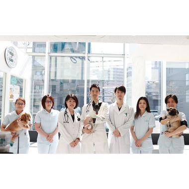 やまざき動物病院