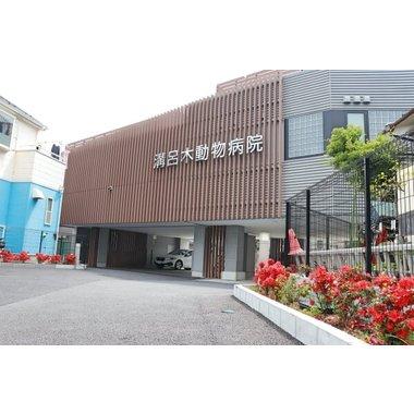 溝呂木動物病院(トリミング)