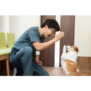 西軽井沢どんぐり動物病院
