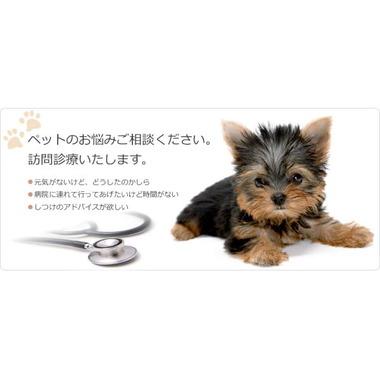 平山獣医科